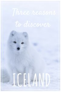 The land of fire and ice is a paradise for those who love nature. But Iceland is not just about nature. Here are the top three reasons to discover Iceland.