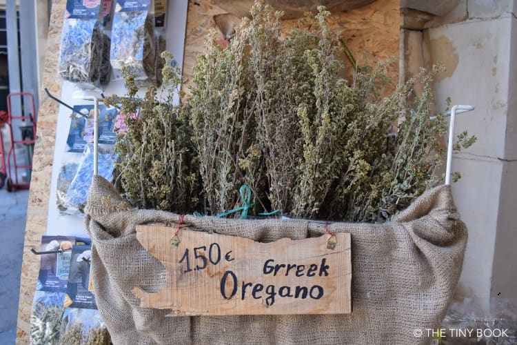 Greek oregano - herbs in Greece