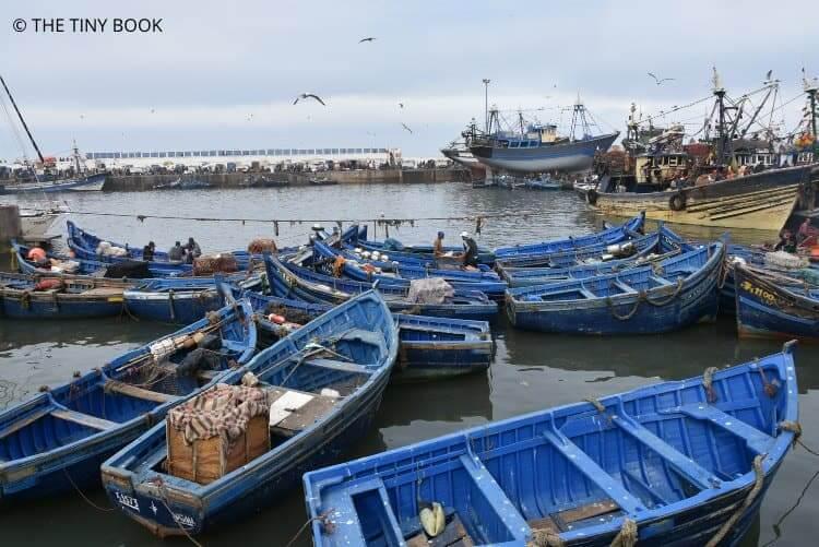 Port Essaouira, Morocco.